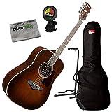 Ibanez AVD10 BVS - Guitarra acústica con afinador, bolsa, soporte y gamuza, color marrón
