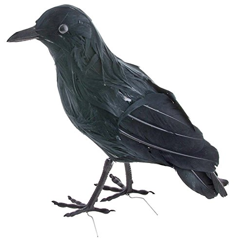 Schwarzer Rabe 23 cm - Tolles Zubehör zu Hexe Sensenmann Galgenmann Zombie Vogelscheuche Kostüm