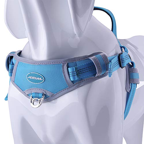 ThinkPet No Pull Harness Breathable Sport Harness - Escape Proof/Quick Fit Reflective Padded Dog Safety Vest with Handle Back/Front Clips, Easy for Walking Training L Light Blue