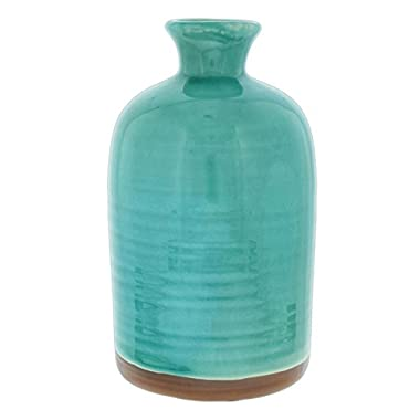 Mayrich 9  Porcelain Crackle Glaze Decorative Vase (Turquoise)