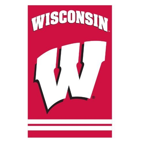 Wisconsin Badgers Applique Banner Flag by Party Animal