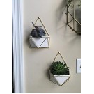 Succulent Wall Geometric Hanging White/Gold - Project 62™ : Target