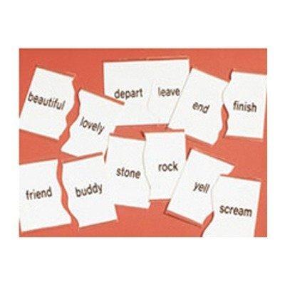 Basic Skills Puzzles Synonym by Didax (English Manual)