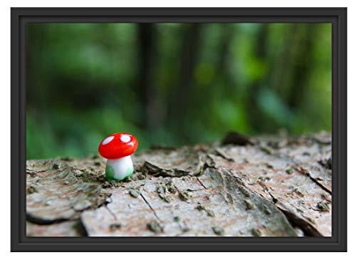 Picati Kleiner Fliegenpilz auf Baumstamm im Schattenfugen Bilderrahmen/Format: 55x40 / Kunstdruck auf hochwertigem Galeriekarton/hochwertige Leinwandbild Alternative