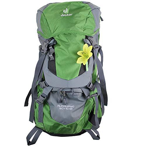 Deuter Alpamayo 50 10 SL Trekking-Rucksack 6381015-2404 Emerald/Titan