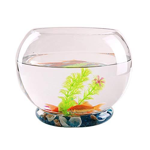 CXD Kleines Glas Aquarium Zylindrisch Verdickt Runde Zylindrische Gold Aquarium Mini Aquarium Wohnzimmer Desktop-Dekoration Landschaftsdekoration,1