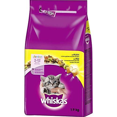 Whiskas Katzenfutter Trockenfutter Junior <1 für Kätzchen/Kitten mit Huhn, 6 x 1,9kg