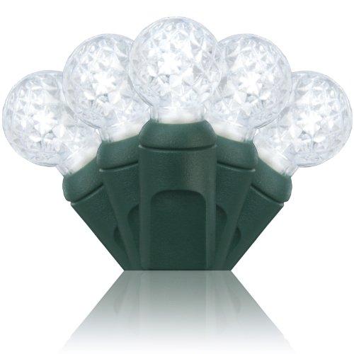 Wintergreen Lighting 70 Light G12 Cool White LED Christmas Lights
