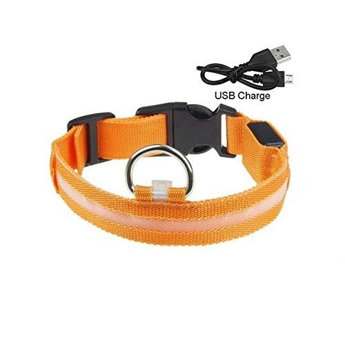 Perro Luminoso del Cuello de la Correa de Carga USB Collar de luz LED Parpadeante de Nylon Led Cachorro Pequeña Mediana Grande Perro Seguro (Color : Orange, Talla : L 45 52 CM)