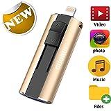GUORUI Memoria USB 128 GB Pendrive Para iPhone OTG Android iPad iPod Computadoras Laptops Flash Drive USB 3.0 para iPhone X/8/8Plus 7/7Plus/5/5s/5c/6/6s Plus/ipad - Plata