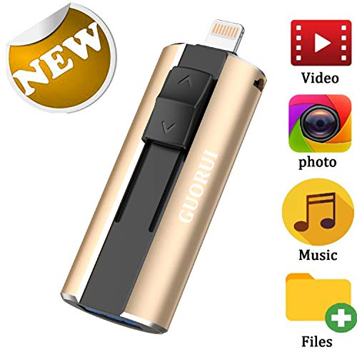 GUORUI Memoria USB 128 GB Pendrive Para iPhone OTG Android iPad iPod Computadoras Laptops Flash Drive USB 3.0 para iPhone X/8/8Plus 7/7Plus/5/5s/5c/6/6s Plus/ipad - Plata