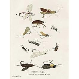 Impression-sur-TOILE-entoilé+CAISSE-américaine-Babbitt-Gwendolyn-Mouches-de-pêche-je-Vintage-Tableaux-sur-toile-100…