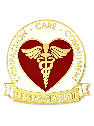 PinMart Nursing Student Graduate Gift Caduceus Red Heart Jewelry Lapel Pin