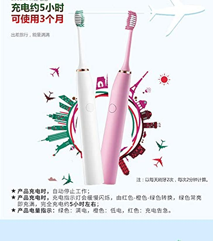 シニスピンポイント用心深いホームレイジースマートソニック振動USB充電自動歯ブラシ低ノイズ強いパワー長距離ブリスベハス ピンク