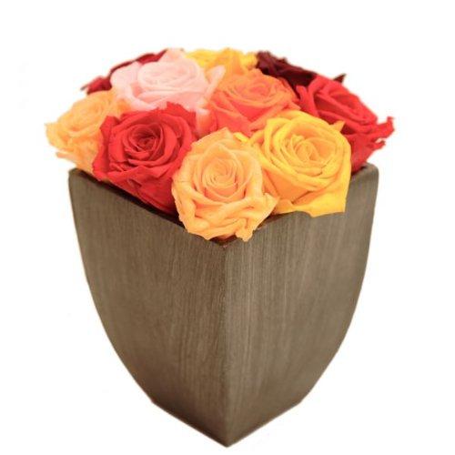 Rosemarie Schulz - Blumengesteck 2-3 Jahre haltbar in Metallvase mit 9 bunten Rosen - Abmessungen: 11x11x20cm
