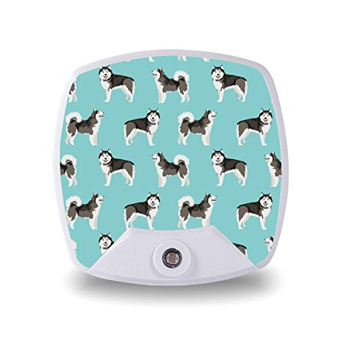 Lámpara de noche LED con sensor inteligente sensor de atardecer a amanecer, Alaskan Malamute de pie simple retrato de perro lámpara blanca cálida para niños escaleras, pasillo, cocina, dormitorio