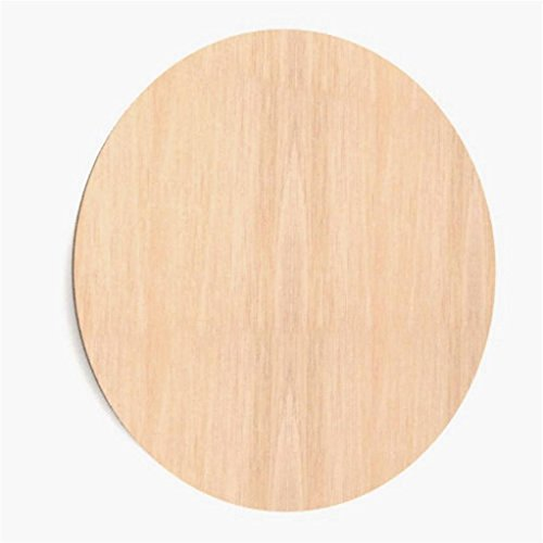 WoMa Kreativ 10x Kreis Ø 20 cm aus Holz Basteln Malen Dekoration Bilderrahmen Holzscheibe (W69_20)