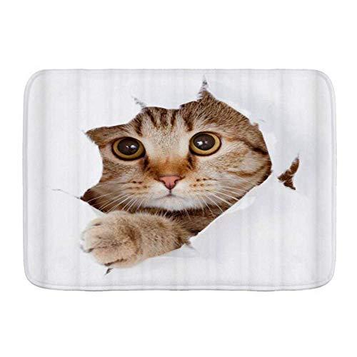Alfombrillas de puerta, lindo gato, gatito encantador, divertido gatito, diseño de cómic, piso de cocina, alfombra de baño, alfombra...