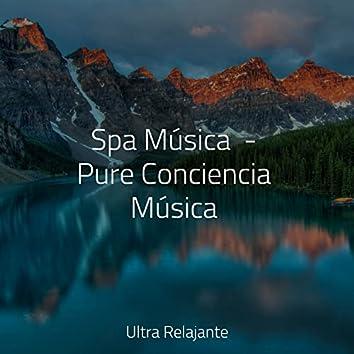 Spa Música  - Pure Conciencia Música