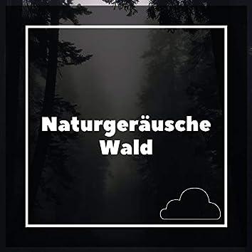 Naturgeräusche Wald