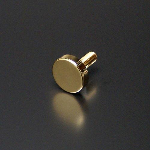 e-kanamono 化粧ビス(真鍮製) フラットタイプ EPS-N20F-12 ゴールド