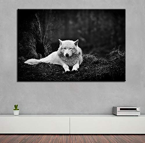SDFSD White Wolf Modular Picture Wall Art HD Print Animal Canvas Wolf Painter Living Room Bedroom Decorative Art Poster50x75cm