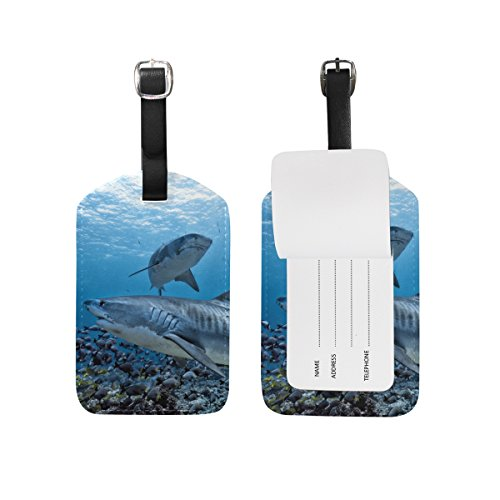 BALII Cool Shark Luggage tag Suitcase ID Label One Piece
