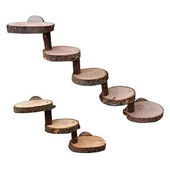 gilivableskr Hamster échelle en Bois Mini Pont pour Animaux de Compagnie Jouet sûr pour Animaux de Compagnie Escalade Outil de Formation d'escalier Belle en Bois à mâcher Jouets échelle pour Friendly