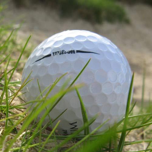 Easy Lakeballs 50 Wilson DX2 Soft Pelotas DE Golf RECUPERADAS/Lake Balls - Calidad AAAA/AAA (Pearl/A Grade) - EN Bolsa DE Red