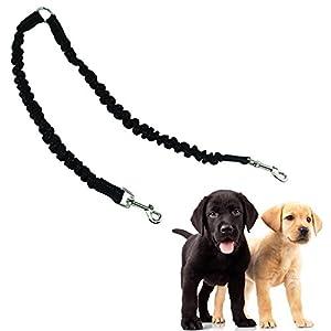 modase Double Laisse pour Chien Pet Leash Coupler, DE Qualité Premium Double Laisse de Dressage pour Chien pour Small Medium Large Dog–sans nœuds Coupler Laisse pour 2Chiens