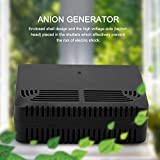 Valentine's Day Carnival Air Purifier for Home Large Room and Office, Intelligent Negative Ion Anion Generator Room Car Ionizer, Removes Dust, Smoke, Odors, and More(Black)