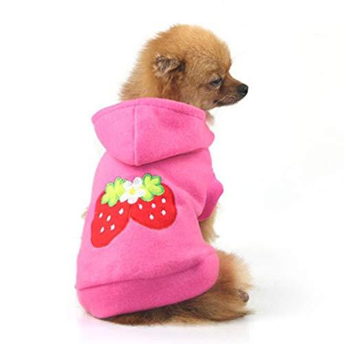 IUOU Encantadora Ropa para Cachorros, Ropa para Perros, Mascotas, Perros pequeños, Linda...