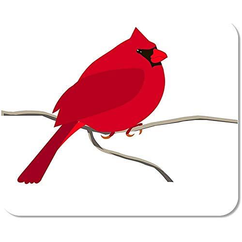 Mousepads Dier Kleurrijke Rode Kardinaal Vogel Voor Kleurplaten Pagina Niet-lip Mousepad Office Muis Mat Gedrukt Werk Mousepad Kleurrijke Spel Speciale School 25 X 30Cm