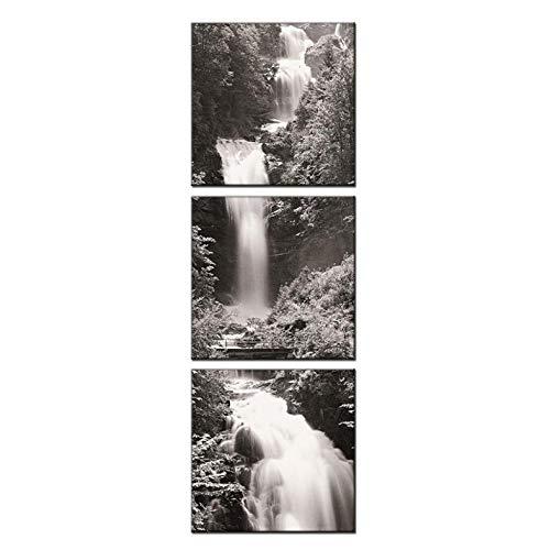 3 Foto's Gecombineerde Woonkamer Decoratieve Schilderij Op Doek Zwart en Wit Watervallen Canvas Beeld/50X50Cmx3 Geen Frame