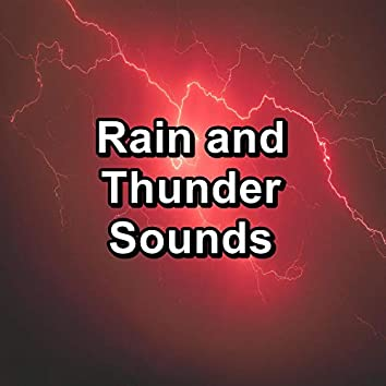 Rain and Thunder Sounds