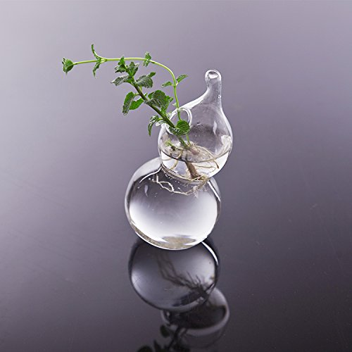 【ノーブランド 品】ホーム インテリア ガラス 花瓶 ボトル フラワーベース 水耕栽培 雑貨 飾り 容器 装飾 透明 ひょうたん形