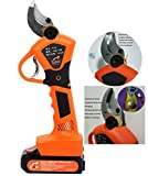 Hengyuanyi-Tools Electric Pruning Shears, Professional 21V Li-ion Battery Tree Branch Pruner, Rechargeable Garden Cutting Shears, 30mm Secateurs Pruning Cutter Tool Orange