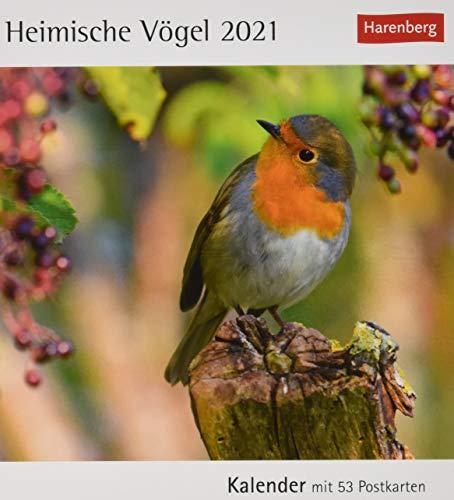 Heimische Vögel Postkartenkalender 2021 - Tischkalender mit Wochenkalendarium - 53 perforierte Postkarten zum Heraustrennen - zum Aufstellen oder ... Format 12 x 15 cm: Kalender mit 53 Postkarten