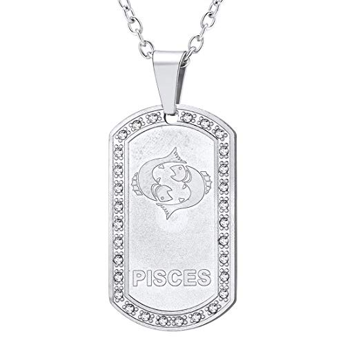 U7 Pisces Dog Tag Shape Pendant & Resizable Rolo Chain Necklace, Feb.22-Mar.21, Rhinestone Zodiac Gift for Men/Women, Stainless Steel 12 Constellation Jewellery Pisces Necklace, GP3611