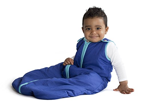 Baby Deedee Sleep Nest Sleeping Sack, Warm Baby Sleeping Bag fits Newborns and Infants,Large (18-36 Months)