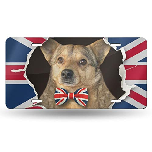 DaLmo Home The Dog in A Bow Tie is Looking Up Through Hole in The Paper Flag of Great Britain 6in X 12in Vintage Novelty License Plate Tag Sign License Plate for Car Truck Or Tractor