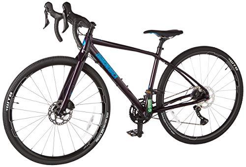 Diamondback Haanjo 5 Gravel Road Bike