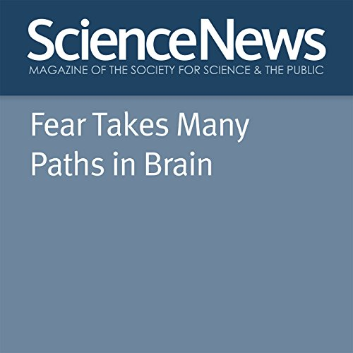 Fear Takes Many Paths in Brain audiobook cover art