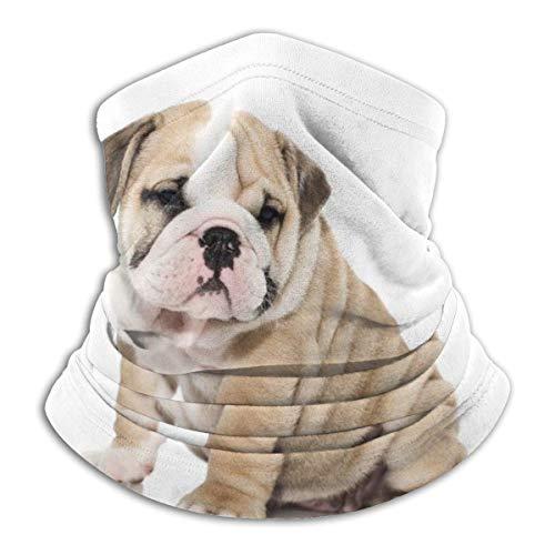 ASDAH Warme hals Gamas gezichtsmasker bivakmuts bulldog hond honden honden puppy baby