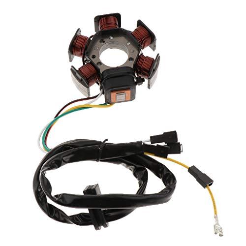 B Blesiya Stator-Magneto Statorplatte Magnetspule Zündspule Magneto Magnetgenerator-Motor