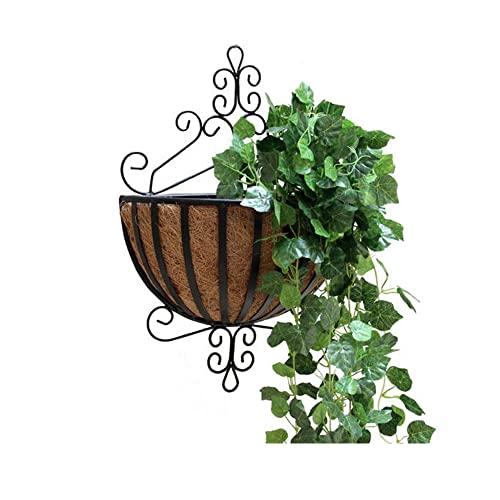 N / B Macetero de Metal para Colgar en la Pared, con Revestimiento de Coco, macetero de Metal para Colgar en la Pared y el Techo, Ideal para Plantas, jardín, Porche, balcón