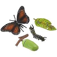 Angoily 4個昆虫置物ライフサイクルの蝶教室の授業アクセサリー教育玩具子供のための学生友人教師