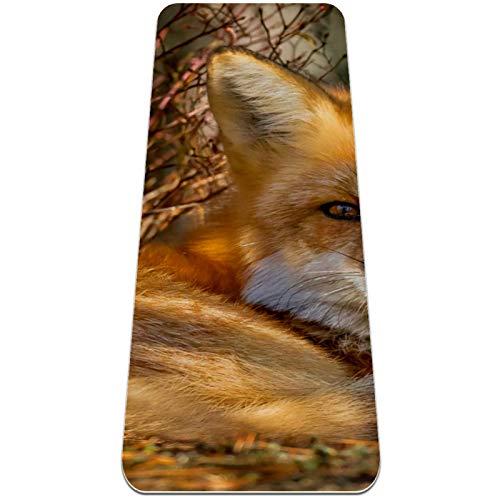 Esterilla Yoga Mat Antideslizante Profesional - Fox descansando - Colchoneta Gruesa para Deportes - Gimnasia Pilates Fitness - Ecológica