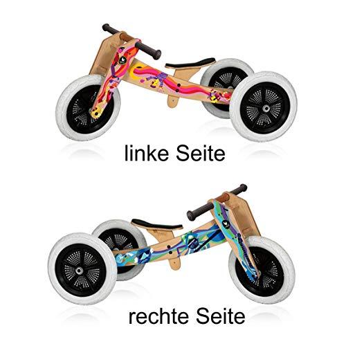 WISHBONE BIKE - speciale editie muziek - 3-bikes-in-1 - vanaf de 1e jaar tot 5 jaar. Jaar te gebruiken.