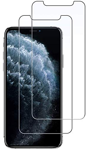 SAGPAD [2 Piezas] [2 Piezas] Cristal Templado para iPhone XR/ 11, Cubierta Completa Vidrio Templado 9H Protector Pantalla Premium, Anti-Huella Digital, Anti-Burbujas para XR/ 11